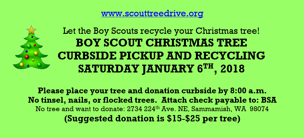 Scout Tree Drive Flyer